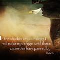 Psalm 57 by Eleanor Abramson