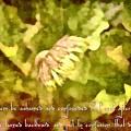 Psalm 70 2 by Michelle Greene Wheeler