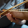 Psaltery by Jim West