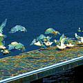 Psychedelic Gulls by Kae Cheatham
