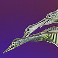 Psychedelic Metal  Sculpture Of Three Mallard Ducks Flying by Peter Lloyd