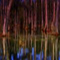 Psychedelic Swamp Trees by Susanne Van Hulst