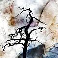 Psychotropic Moon by Ed Hall