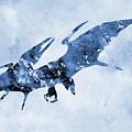 Pterodactyl-blue by Erzebet S