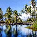 Pu Uhonua O Honaunau Pond by Kurt Van Wagner