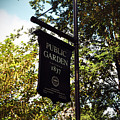 Public Garden 1837 Boston by Brittany Horton