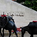 Public Memorial Honoring Military Animals In War London England by Imran Ahmed