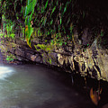 Puerto Rico Waterfall by Thomas R Fletcher