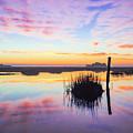 Puff The Magic Dragon - Sunrise Sunset Photo Art by Jo Ann Tomaselli
