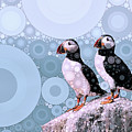 Puffins By The Sea by Susan Maxwell Schmidt