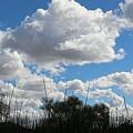 Puffy Sky  by Christy Pooschke