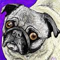 Olivia The Pug by Heidi Creed