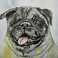 One Eyed Pug Portrait by Anna Ruzsan