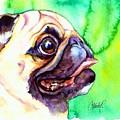 Pug Profile by Christy Freeman Stark