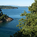 Puget Sound by Linda Kerkau