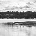 Puget Sound Reflections by Brandon Johnson