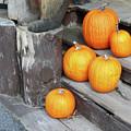 Pumpkin Autumn In Adirondacks by Kate  Leikin