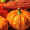 Pumpkin Corn Still Life by Garry Gay