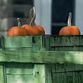 Pumpkin Dance by Kenneth Campbell