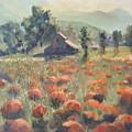 Pumpkin Fields by Bryan Alexander