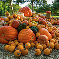 Pumpkin Patch by Rod Lindley