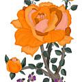 Pumpkin Rose And Violas by Anne Norskog