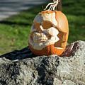 Pumpkin Skull by Tom Cochran