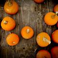 Pumpkin Tops by Marisela Mungia
