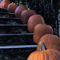 Pumpkins - Halloween by Dolores Russo