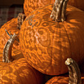 Pumpkins And Lace Shadows by Bruce Frye