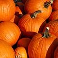 Pumpkins by Angie Tirado