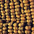 Pumpkins by Barry Lycka