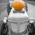 Pumpkins For Sale Vermont by Edward Fielding