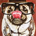 Punk Pug by David Rhys