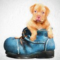 Pup In A Shoe by Robert Kinser