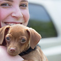 Puppy And Smiles by Ronald Hoehn