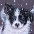 Puppy Angel by Elena Kolotusha
