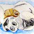 Puppy Dreams by Carol Blackhurst