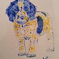 Puppy Stare by Jack Bunds