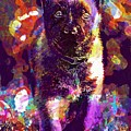 Puppy Sweet Cute Dog Young Animal  by PixBreak Art