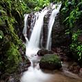 Pura Vida Waterfall by David Morefield