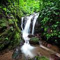 Pura Vida Waterfall Horizontal by David Morefield