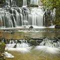Purakanui Falls by Andrea Cadwallader