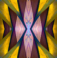 Pure Gold Lincoln Park Wood Pavilion N89 V1 by Raymond Kunst