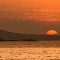 Pure Golden Sunset by Leo Gardner