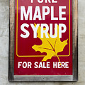 Pure Maple Syrup For Sale Here Sign by Edward Fielding