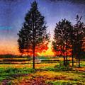 Pure Nature by Leonardo Digenio