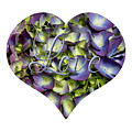 Purple And Cream Hydrangea Flowers Heart With Love by Rose Santuci-Sofranko