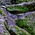 Purple And Green Rock by Cate