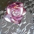 Purple Blossom by Lovina Wright